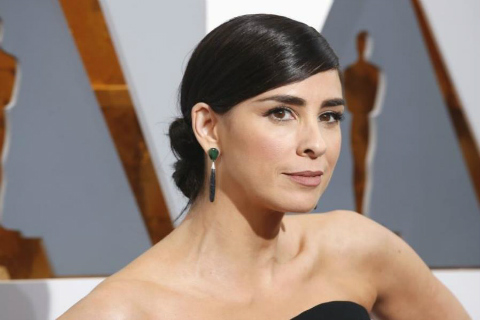 Sarah Silverman Responds Brilliantly To Sexist Twitter Troll