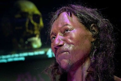 Dark Skin and Blue Eyes: DNA helps draw Portrait of Early Briton