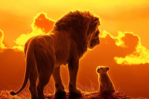 The New 'Lion King' Gets Some Tiny Adjustments by One Fan